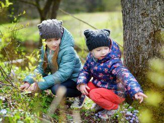 naturbingo forår